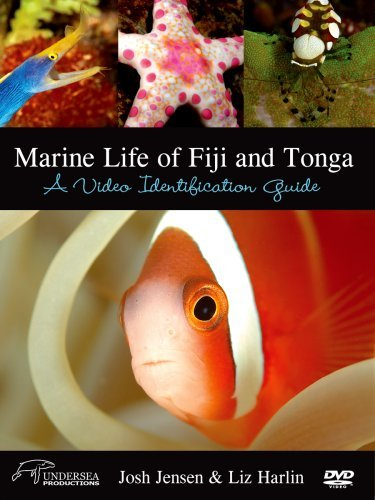 Marine Life of Fiji & Tonga